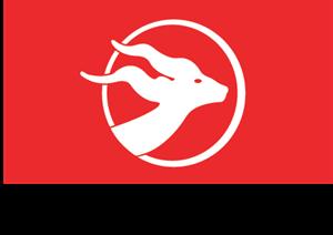 AIr Djibouti Red Sea Airlines Logo ,Logo , icon , SVG AIr Djibouti Red Sea Airlines Logo
