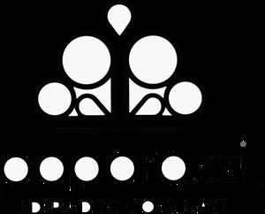 Paparazzi Logo ,Logo , icon , SVG Paparazzi Logo