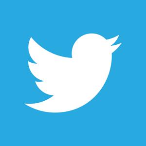 Twitter 2012 Negative Logo ,Logo , icon , SVG Twitter 2012 Negative Logo