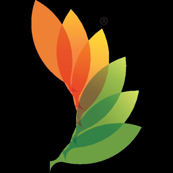 RACE_CLEAN ENERGY Logo ,Logo , icon , SVG RACE_CLEAN ENERGY Logo
