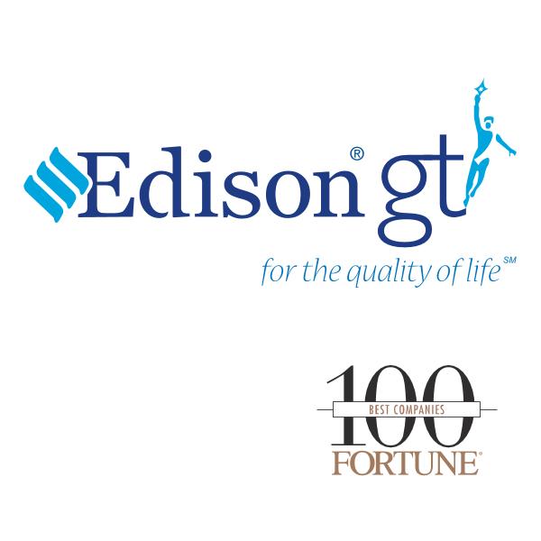 An Edison Electric Company Logo ,Logo , icon , SVG An Edison Electric Company Logo