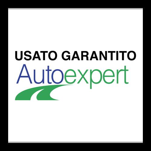 AutoExpert ,Logo , icon , SVG AutoExpert