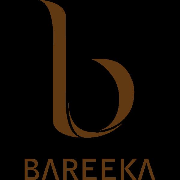 Bareeka Business parks Logo ,Logo , icon , SVG Bareeka Business parks Logo
