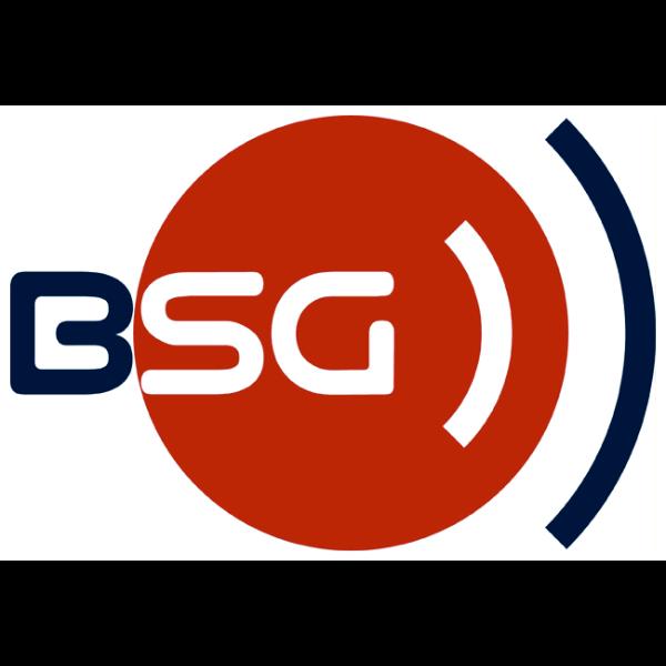 BSG Logo ,Logo , icon , SVG BSG Logo