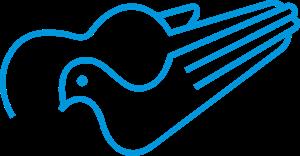 Cancao Nova TV Logo ,Logo , icon , SVG Cancao Nova TV Logo