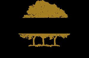 Canopy Growth Corporation Logo ,Logo , icon , SVG Canopy Growth Corporation Logo