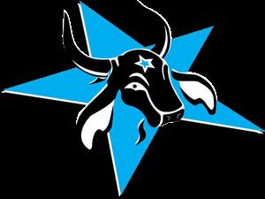 Caprichoso Logo ,Logo , icon , SVG Caprichoso Logo