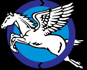 Centro Esportivo Nova Esperanca (CENE)-MS Logo ,Logo , icon , SVG Centro Esportivo Nova Esperanca (CENE)-MS Logo