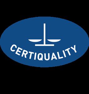 Certiquality ISO 9001:2015 Logo ,Logo , icon , SVG Certiquality ISO 9001:2015 Logo