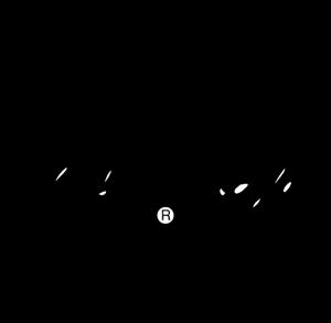 Chuck Tylor Logo ,Logo , icon , SVG Chuck Tylor Logo