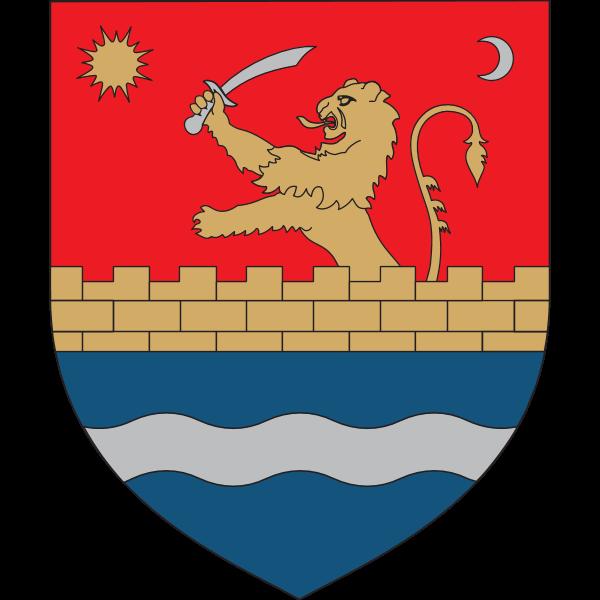 Consiliul Judetean Timis Logo ,Logo , icon , SVG Consiliul Judetean Timis Logo