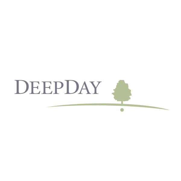 DeepDay Logo ,Logo , icon , SVG DeepDay Logo