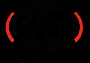 Egyptian National Railways Logo ,Logo , icon , SVG Egyptian National Railways Logo