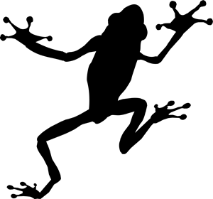 Especie Soluзхes Web – a marca da perereca Logo ,Logo , icon , SVG Especie Soluзхes Web – a marca da perereca Logo