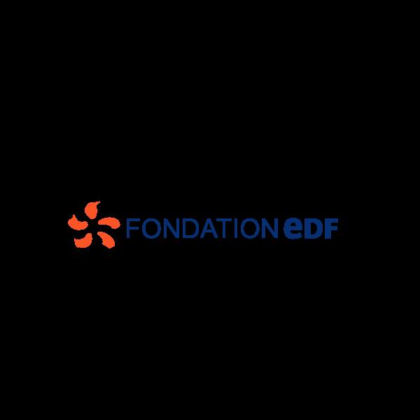 Fondation EDF Logo ,Logo , icon , SVG Fondation EDF Logo