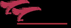 Grupo Senda Logo ,Logo , icon , SVG Grupo Senda Logo