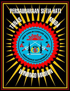 Indonesia martial arts Logo ,Logo , icon , SVG Indonesia martial arts Logo