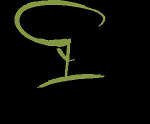 Jequiti Logo ,Logo , icon , SVG Jequiti Logo