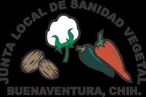 Junta Local de Sanidad Vegetal Logo ,Logo , icon , SVG Junta Local de Sanidad Vegetal Logo