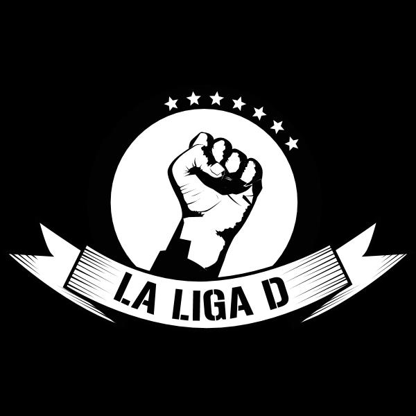 La Liga D / Brand 2009 Logo ,Logo , icon , SVG La Liga D / Brand 2009 Logo