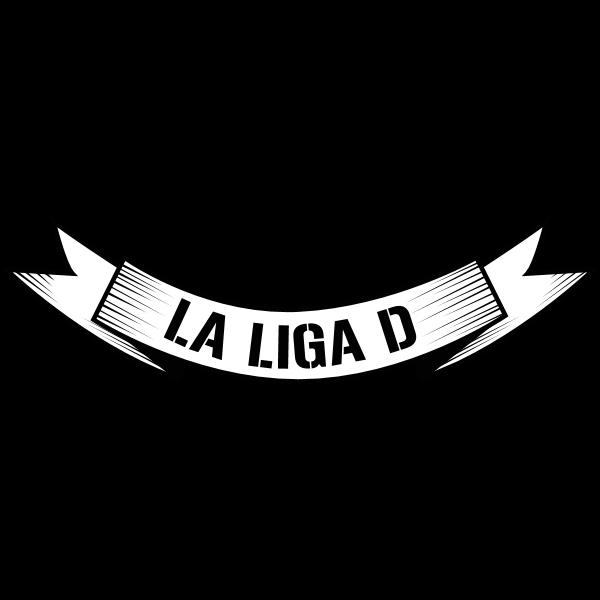 La Liga D / Logotype 2009 Logo ,Logo , icon , SVG La Liga D / Logotype 2009 Logo