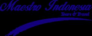 Maestro Tours & Travel Logo ,Logo , icon , SVG Maestro Tours & Travel Logo