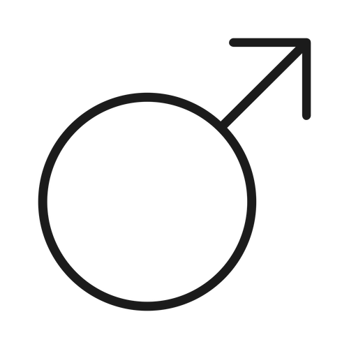 male ,Logo , icon , SVG male