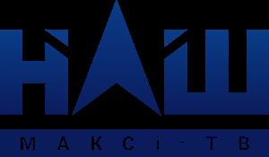 NASH. Maxxi-TV Logo ,Logo , icon , SVG NASH. Maxxi-TV Logo