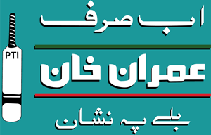 Pakistan Tehreek e Insaf Logo ,Logo , icon , SVG Pakistan Tehreek e Insaf Logo