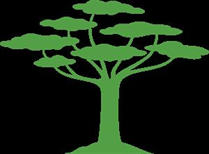 San Patrignano Logo ,Logo , icon , SVG San Patrignano Logo