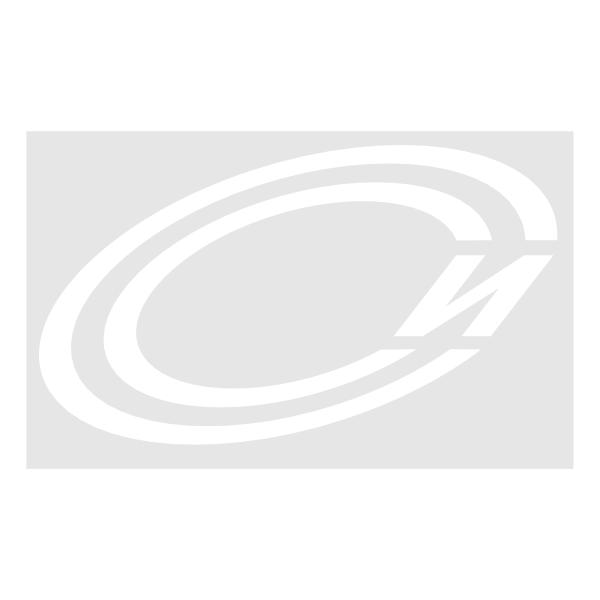 sarov-svyaz-inform ,Logo , icon , SVG sarov-svyaz-inform