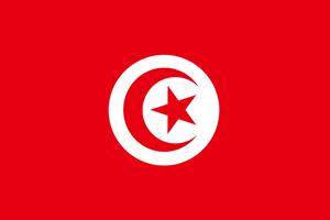 Tunisia Flag Logo ,Logo , icon , SVG Tunisia Flag Logo