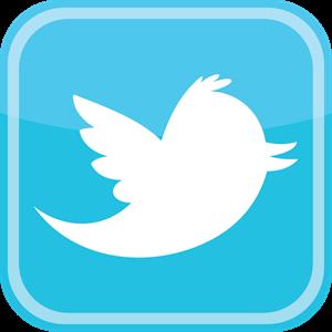 Twitter bird icon Logo