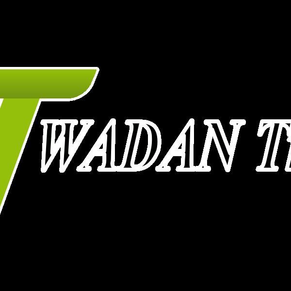 WADAN Travels Logo ,Logo , icon , SVG WADAN Travels Logo