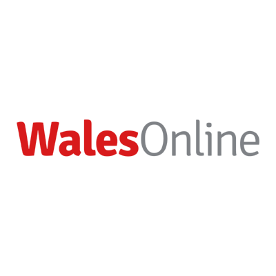 wales online ,Logo , icon , SVG wales online