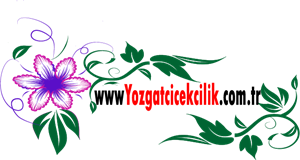 yozgat çiçek Logo ,Logo , icon , SVG yozgat çiçek Logo